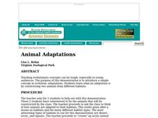 Animal Adaptations Lesson Plan