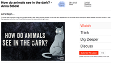 How Do Animals See in the Dark? Video