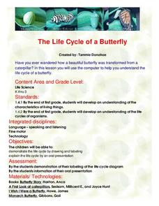 The Life Cycle of a Butterfly Lesson Plan