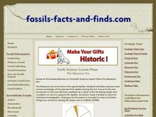 The Mesozoic Era Lesson Plan