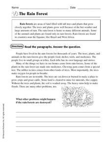 The Rain Forest Worksheet