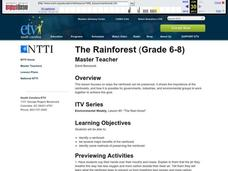 The Rainforest Lesson Plan