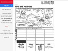 Animal Graph Worksheet