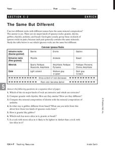 The Same But Different Lesson Plan