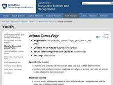 Animal Camouflage Lesson Plan