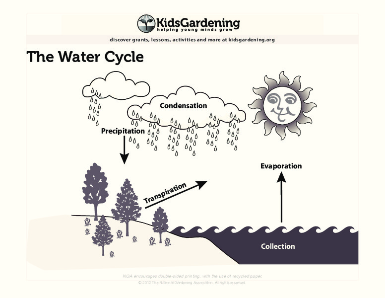 The Water Cycle Printables & Template