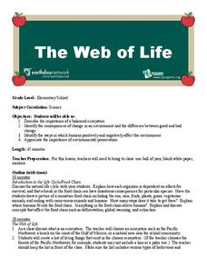 The Web of Life Lesson Plan