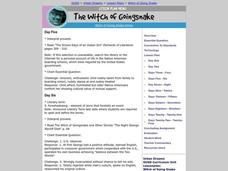 The Witch of Goingsnake Lesson Plan