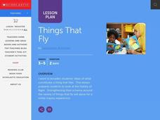 Things That Fly Lesson Plan