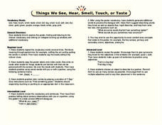 Things We See, Hear, Smell, Touch, or Taste Lesson Plan