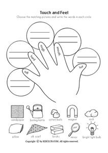 Touch and Feel Worksheet