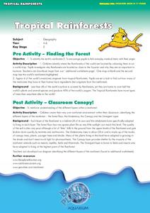 Tropical Rainforests Lesson Plan
