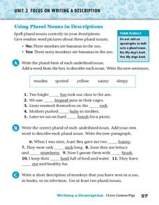Using Plural Nouns in Descriptions Worksheet