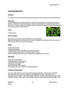 Viewing Bacteria Lesson Plan