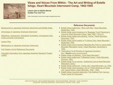 Views and Voices from Within Lesson Plan