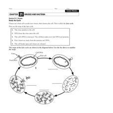 viruses worksheet for 9th higher ed lesson planet. Black Bedroom Furniture Sets. Home Design Ideas