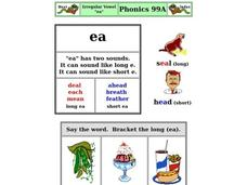 "Vowel Form ""ea"" Worksheet"