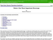 Water: Our Most Important Beverage Lesson Plan