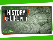 A Brief History of Life: Survival Is Hard Video