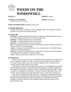 WEEDS ON THE WINDOWSILL Lesson Plan