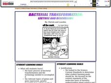 Bacterial Transformation Lesson Plan