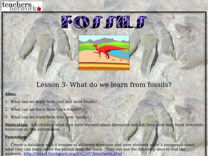What Do We Learn From Fossils  Lesson Plan For 3rd