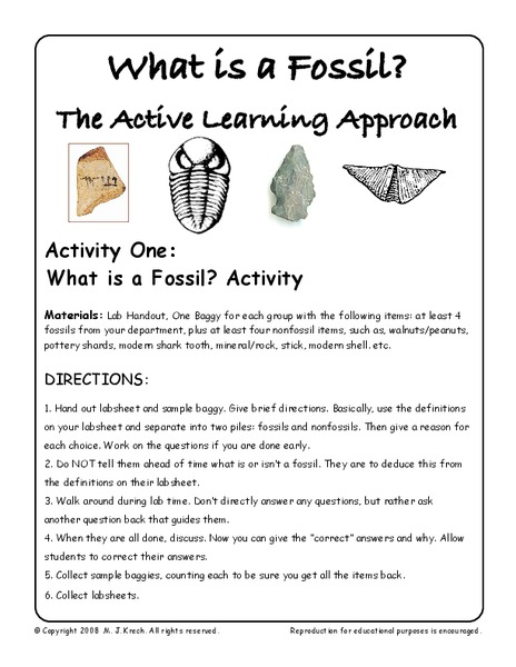What Is A Fossil Worksheet For 7th 9th Grade Lesson