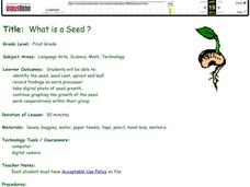 What is a Seed? Lesson Plan