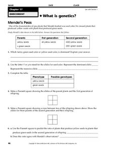 What is Genetics? Worksheet