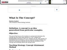 What Is The Concept? Lesson Plan