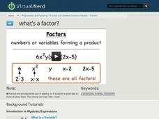 What's a Factor? Video