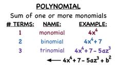 What's a Polynomial? Video