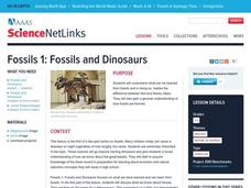 Where Are the Dinosaurs? Lesson Plan