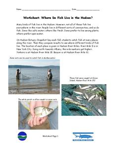 Where Do Fish Live in the Hudson? Worksheet