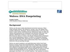 Wolves: DNA Pawprinting Worksheet