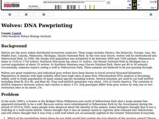 Wolves: DNA Pawprinting Lesson Plan
