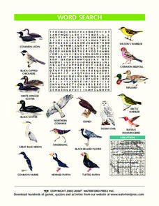 Word Search: Birds Lesson Plan