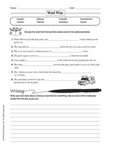 Word Wise Worksheet