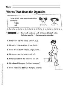 Words That Mean the Opposite Worksheet