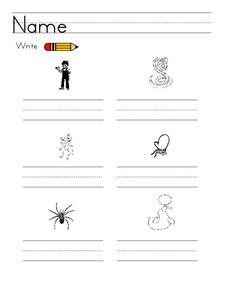 Write the Word Worksheet