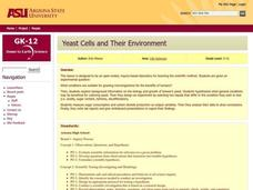 Yeast Cells and Their Environment Lesson Plan