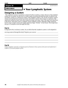 Your Lymphatic System Worksheet