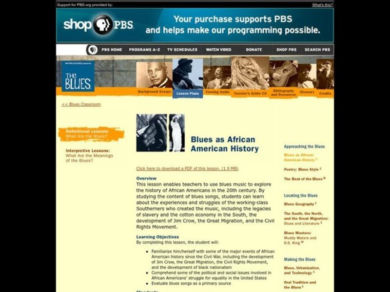 History, African Americans, The Blues Lesson Plan