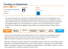 Conduct and Experiment—Whelk-Come to Mathematics Lesson Plan