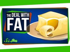 The Deal with Fat Video