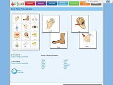 Body Parts Picture Cards Printables & Template