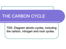 The Carbon Cycle Presentation