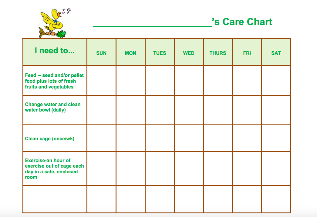 pet care lesson plans  u0026 worksheets