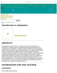 Introduction to Adaptation Lesson Plan