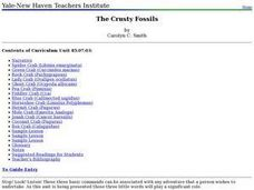 The Crusty Fossils Lesson Plan